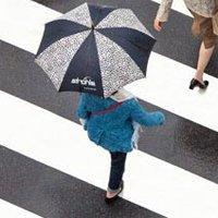 Regenschirm Produktkategorie Bild